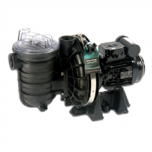 Sta-Rite 5P2RE-1 Filtration Pump 1.0HP (0.75kW) Single Phase
